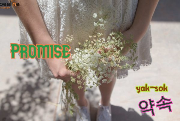 How To Say Promise in Korean