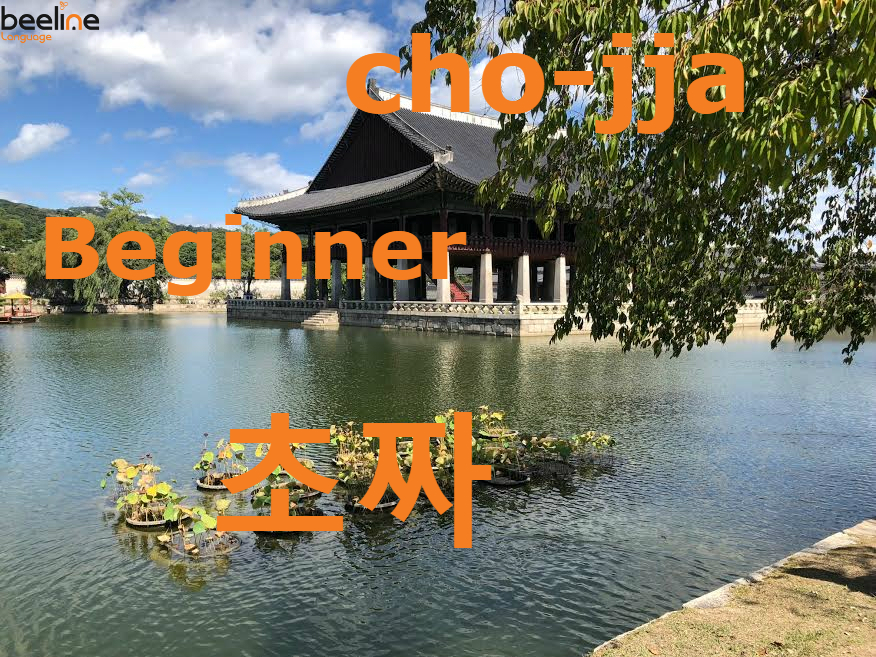 How To Say a Beginner in Korean