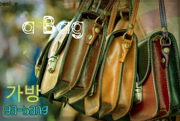 how to say a bag in Korean