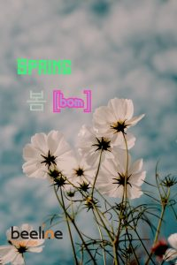 how to say spring in korean