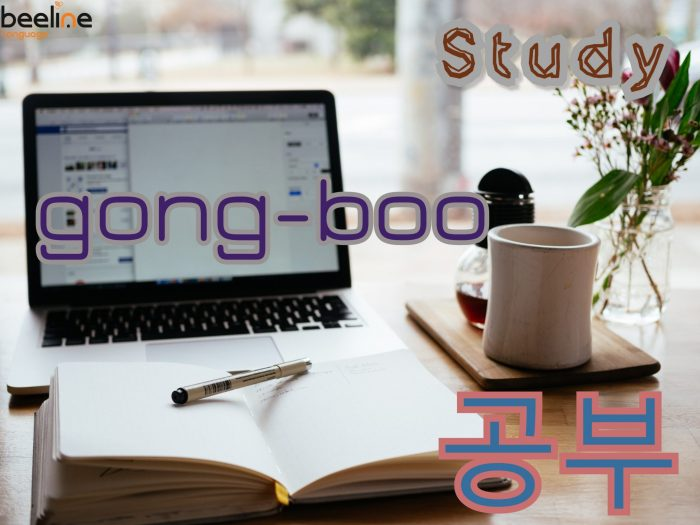 study in Korean