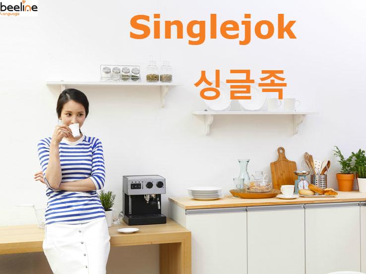 Singlejok