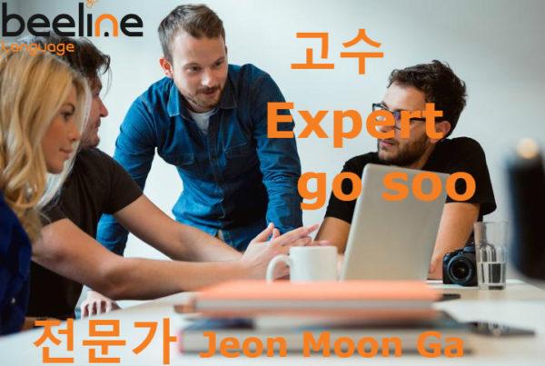 an expert in korean