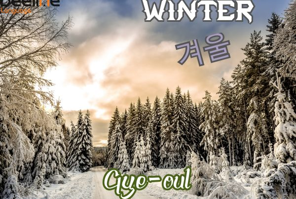 How To Say Winter in Korean